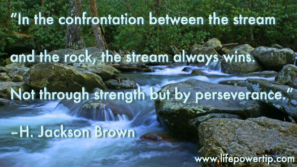 image - Between the stream and the rock